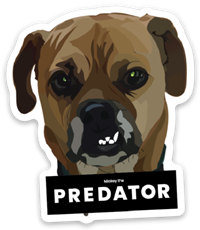 Predator tool