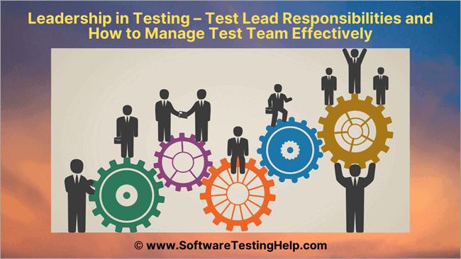 Leadership in Testing
