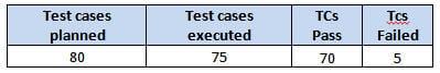 test summary report 1