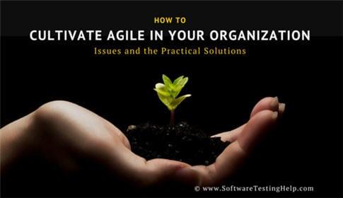Cultivating Agile