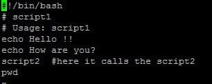 Multiple script Code
