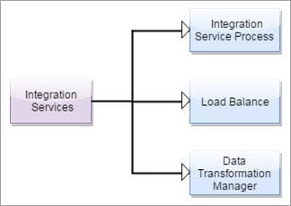 Powercenter Integration Service