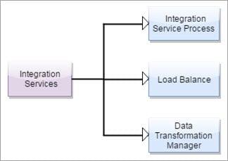 Powercenter Integration Service