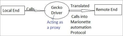 Gecko Flowchart