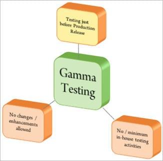 Gamma Testing