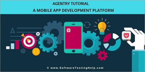 Agentry Mobile App Development