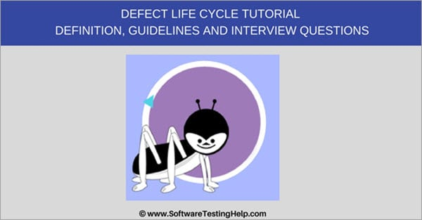 What is Defect/Bug Life Cycle in Software Testing? Defect
