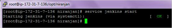 Start Jenkins Service