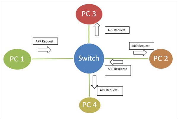 Layer-2 Switches Connecting Host