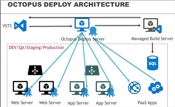 37.Octopus Deployment Architecture