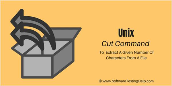 Cut command in Unix