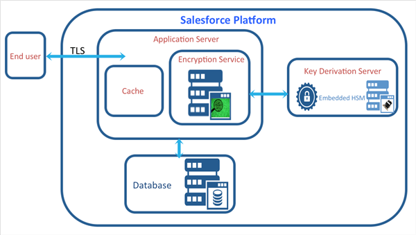 Salesforce Platform Architecture