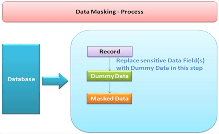 Data Masking process