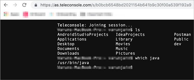Web Session looks to the remote user