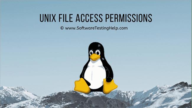 Unix File Access Permissions