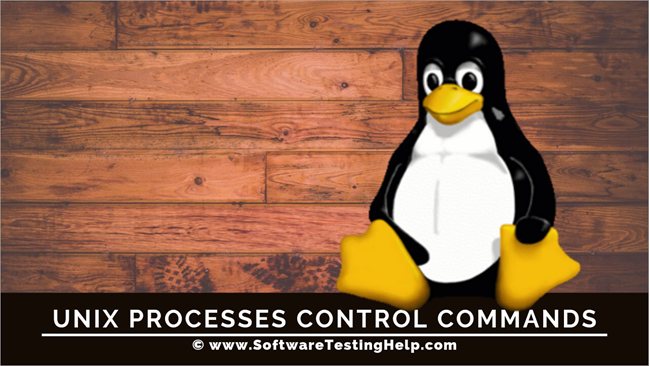Unix Processes Control Commands