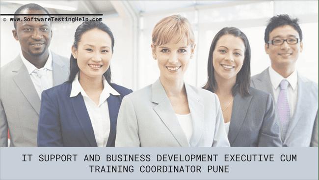 IT Support and Business Development Executive Cum Training Coordinator Pune