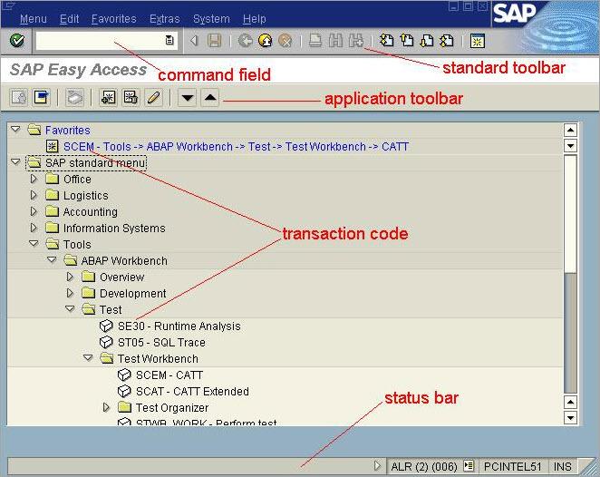 SAP Screen Display and Screen Control