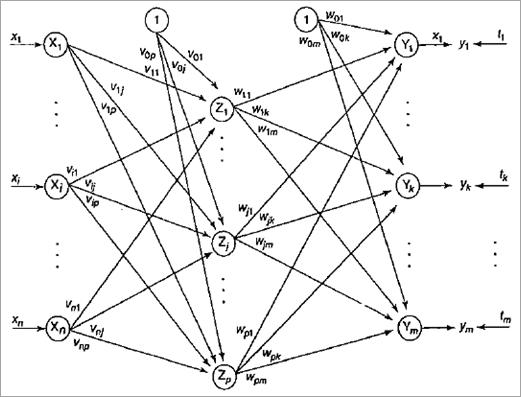 BP Algorithm