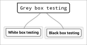 Grey box testing