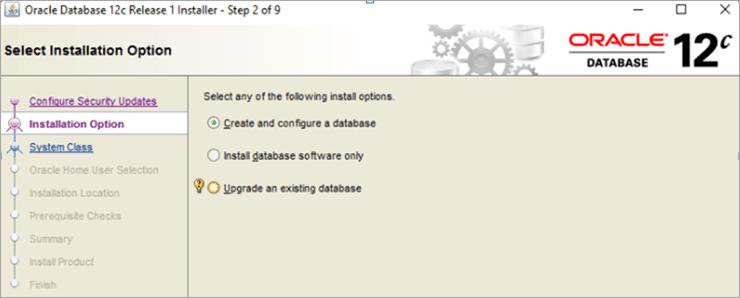 Step 2: Select Installation option