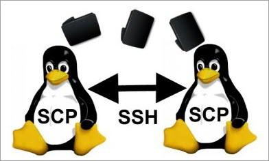 SCP Command