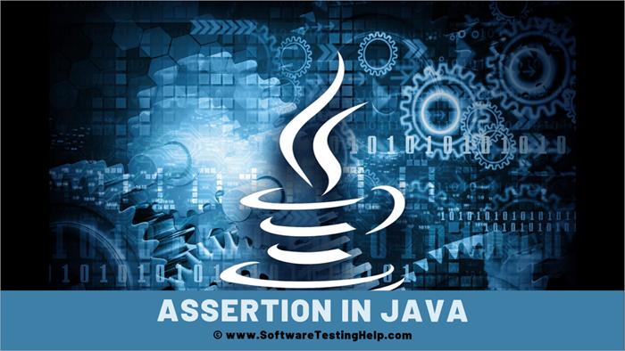 Assertion in Java