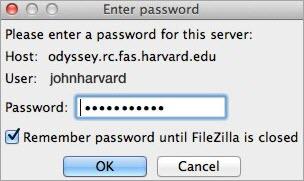 Enter Filezilla password