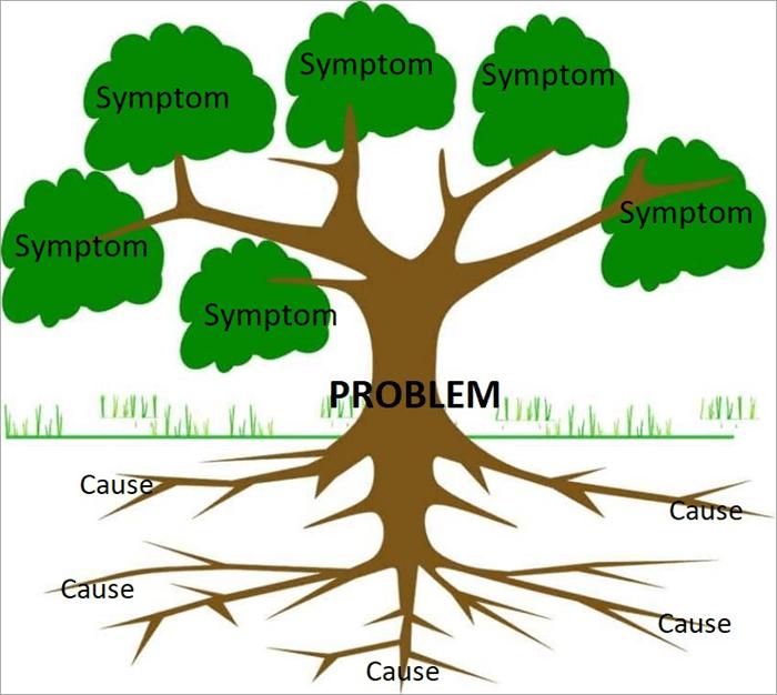 Origin of the name Root Cause Analysis