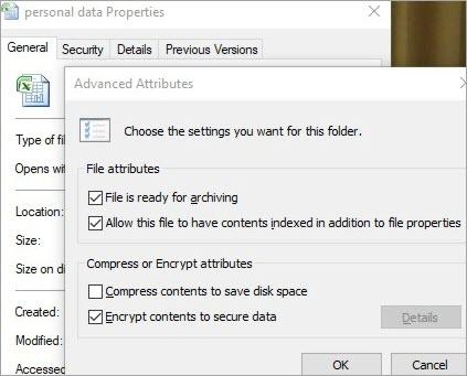 advanced attributes-EFS