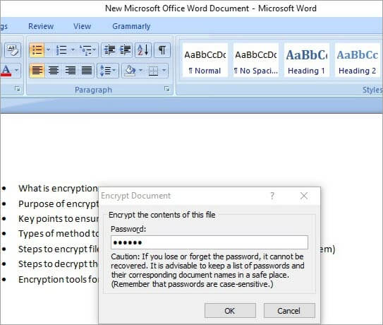enter password to encrypt MS office doc
