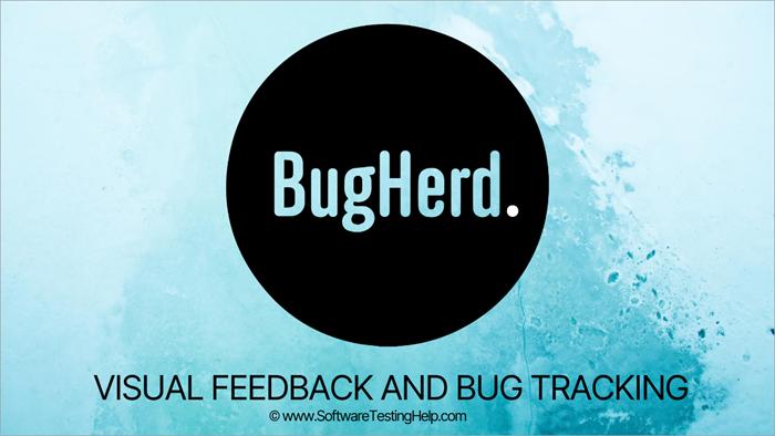 BugHerd Review