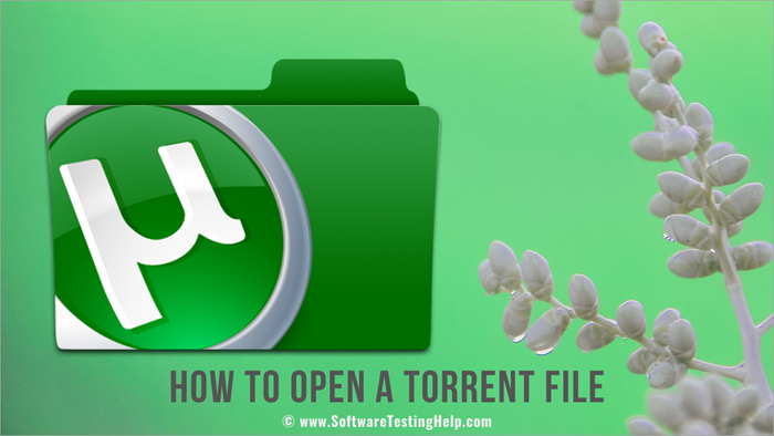 How to Open a Torrent File