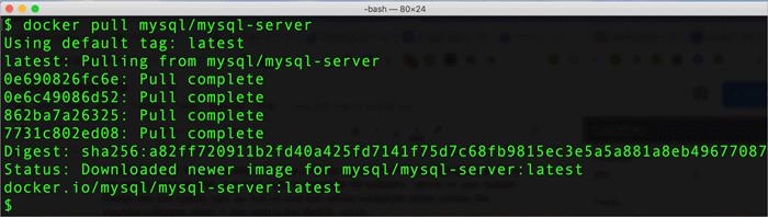 docker_install_mysql