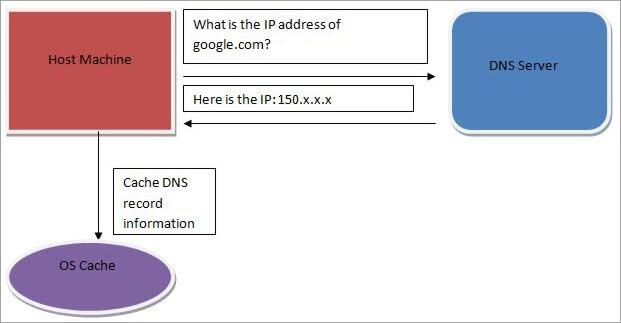 Block diagram of DNS Cache
