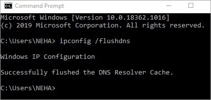 DNS Cache Flushed