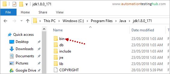 Bin Folder