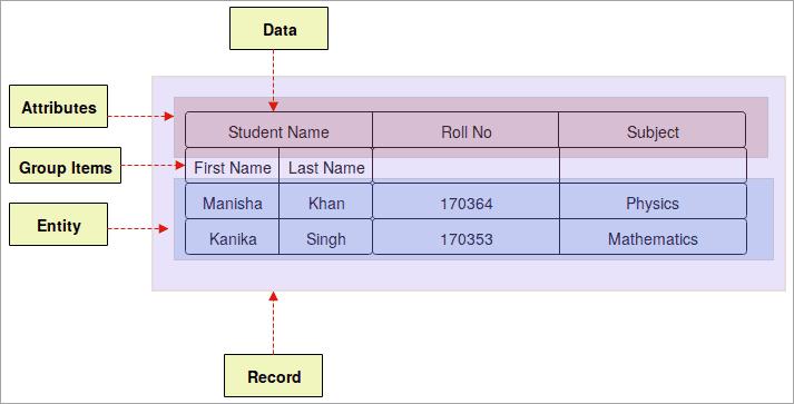 Python basic_terminology - Field